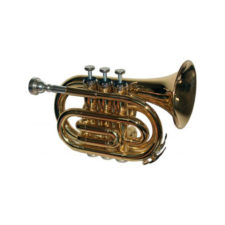 trompette ashley astp6