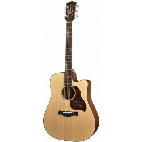 guitare folk richwood d20ce