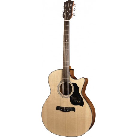 guitare folk richwood g40ce