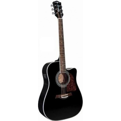guitare dreadnought électro richwood rd17cebk