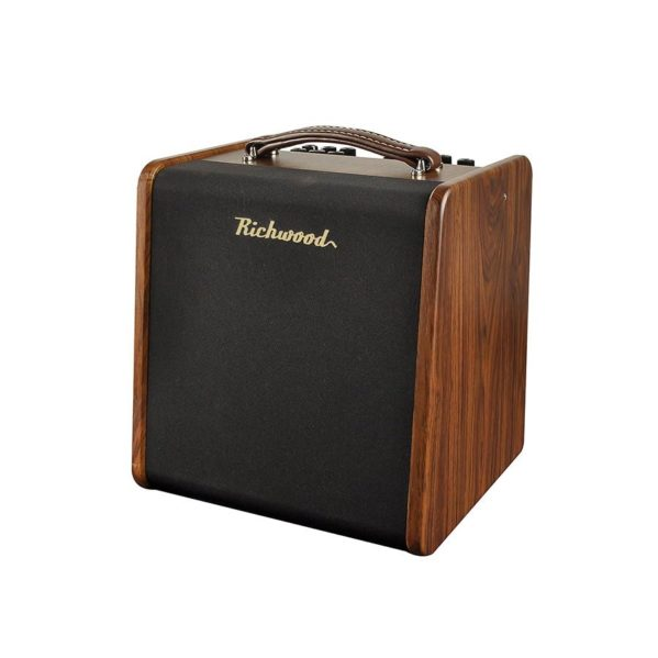 amplificateur guitare acoustique richwood rac-50
