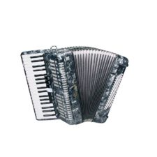 accordéon chromatique 80 basses serenelli y8037g