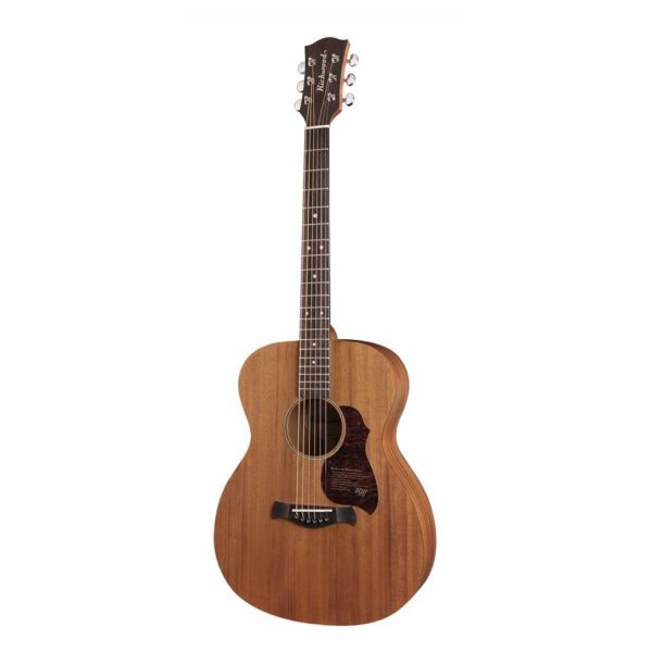 guitare folk richwood master series a50-e