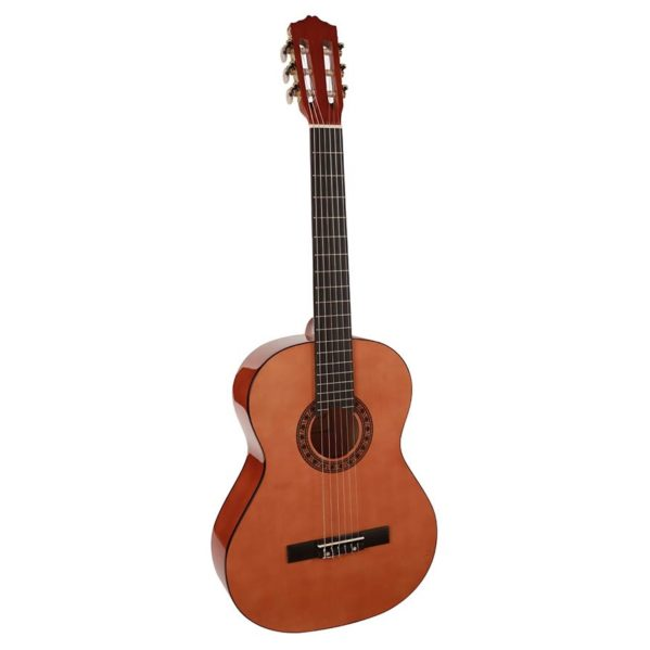 guitare classique salvador student series sc-144