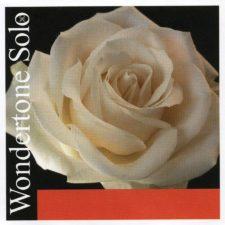 jeu de cordes pour violon pirastro wondertone solo p410021